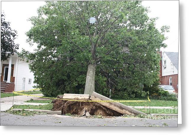 Aftermath Of Hurricane Irene Greeting Card by John Telfer