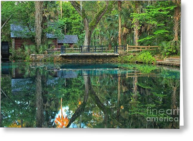 Afternoon At Juniper Springs Mill House Greeting Card by Adam Jewell