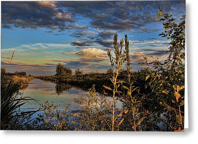 Late Afternoon In The Mead Wildlife Area Greeting Card