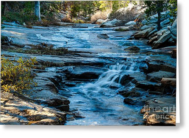 Afternoon Light On River. 1-7706  Greeting Card