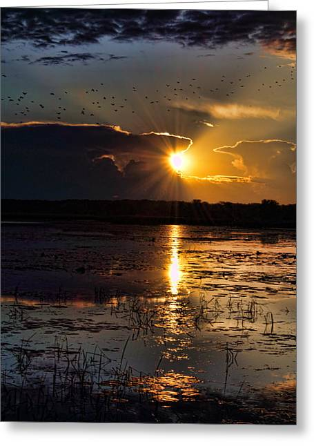 Late Afternoon Reflection Greeting Card