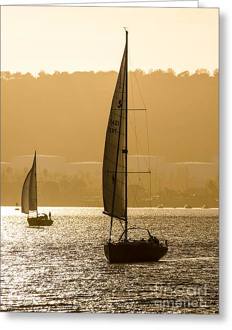Afternoon Sails A2892 Greeting Card