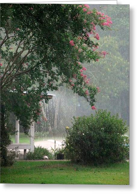 Afternoon Showers Greeting Card by N S