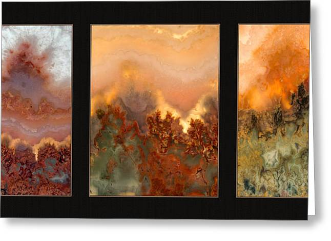 Agate Triptych 3 Greeting Card by Leland D Howard