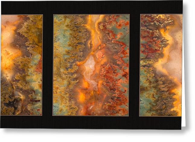 Agate Triptych 6 Greeting Card by Leland D Howard