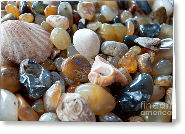 Agates Greeting Card by Gwyn Newcombe