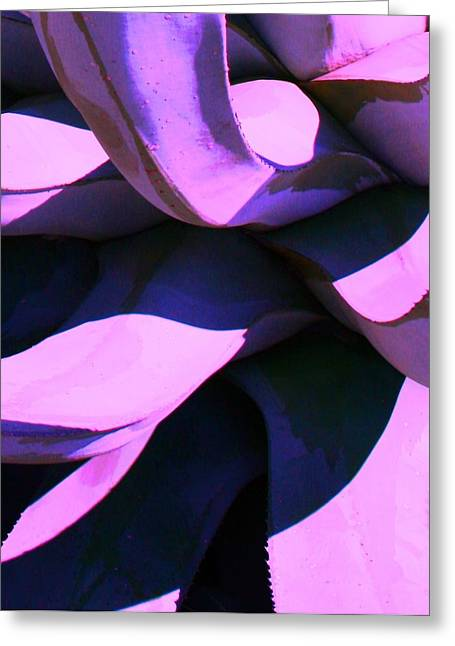 Agave Greeting Card