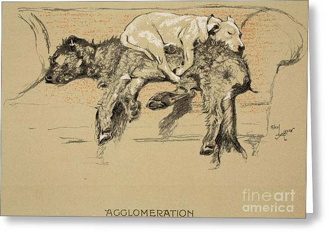 Agglomeration Greeting Card by Cecil Charles Windsor Aldin