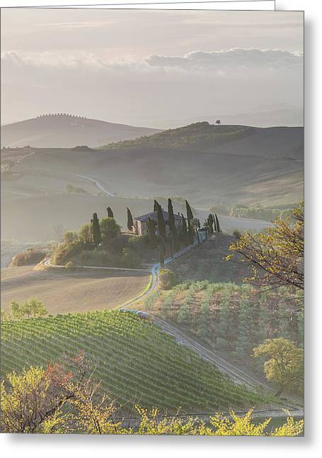 Agricultural Landscape, Val D'orcia Greeting Card by Peter Adams