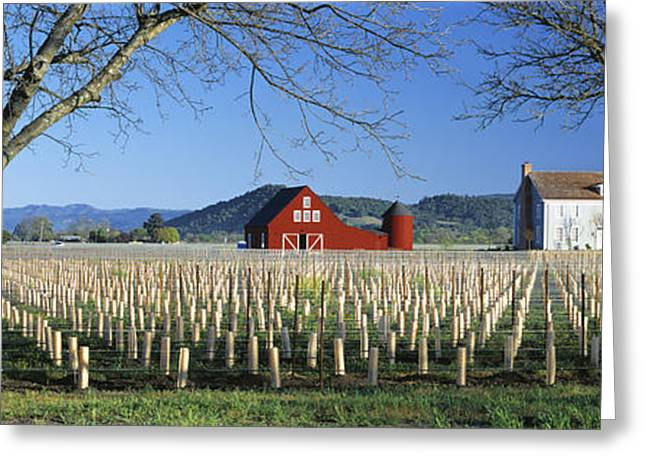 Agriculture - A New Red Barn And Home Greeting Card by Randy Vaughn-Dotta