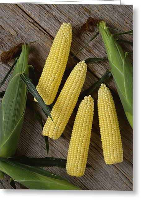 Agriculture - Ears Of Sweet Yellow Corn Greeting Card by Ed Young