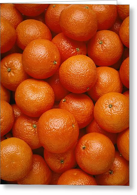 Agriculture - Field Of Tangerines Greeting Card by Joel Glenn