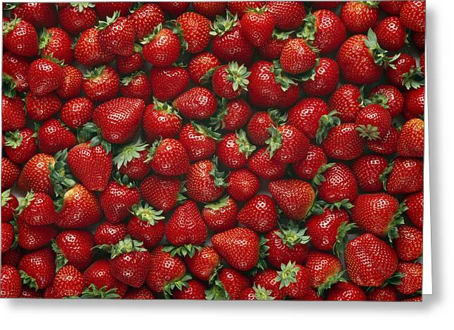 Agriculture - Ripe Strawberries Greeting Card by Ed Young