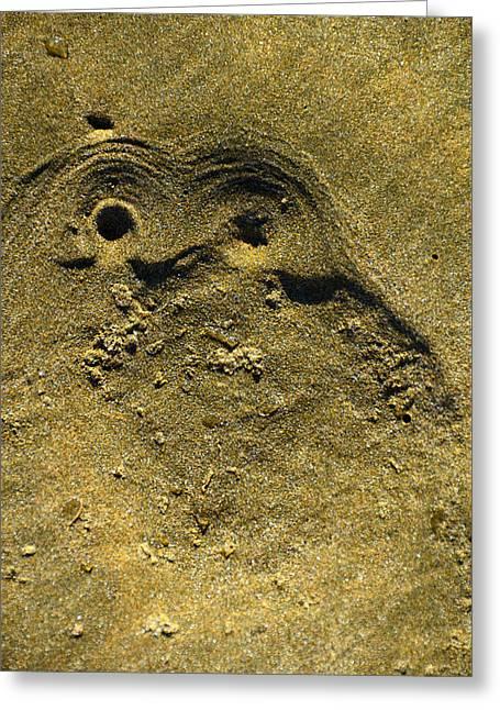 Ahipara Owl Greeting Card by Helen Worley