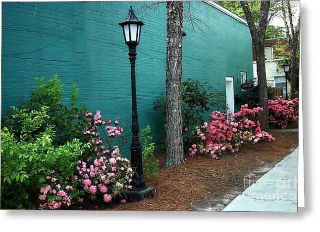 Aiken South Carolina Garden Street Scene Greeting Card