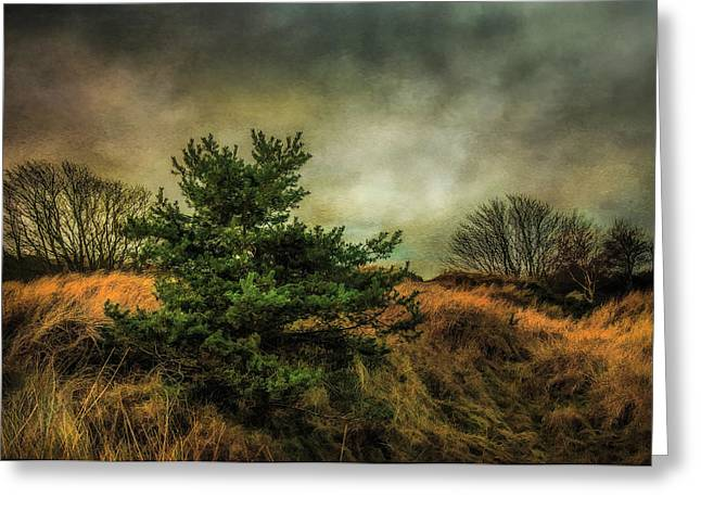 Greeting Card featuring the photograph Ainsdale Dunes In Winter by Brian Tarr