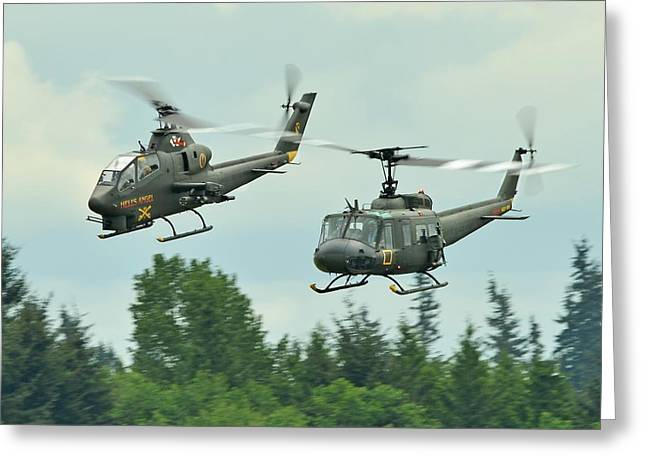Air Cav Greeting Card