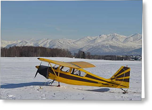 Airplane On Ice Greeting Card