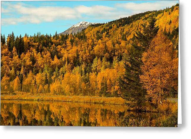 Ak Fall Greeting Card