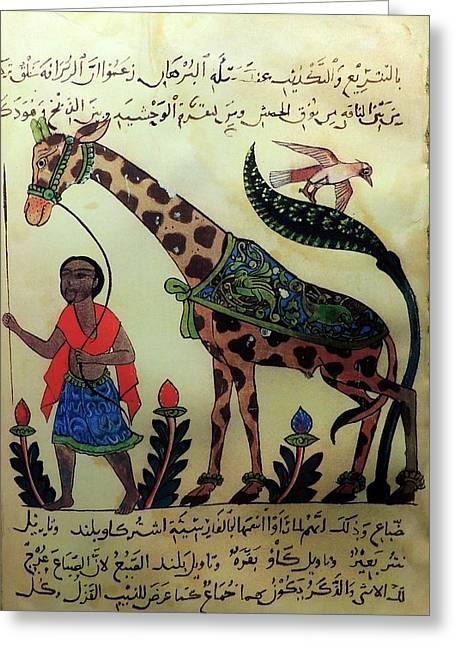 Al-jahiz Greeting Card by Universal History Archive/uig