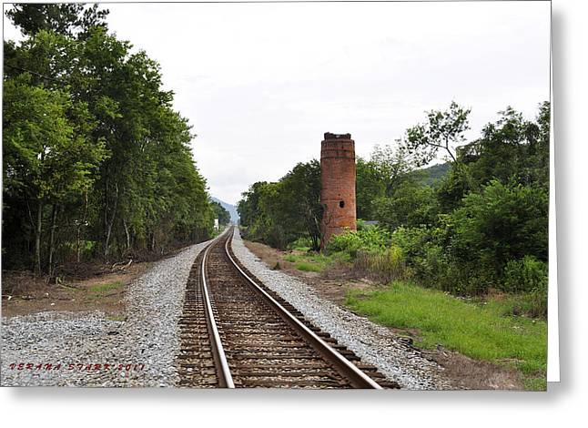 Greeting Card featuring the photograph Alabama Tracks by Verana Stark