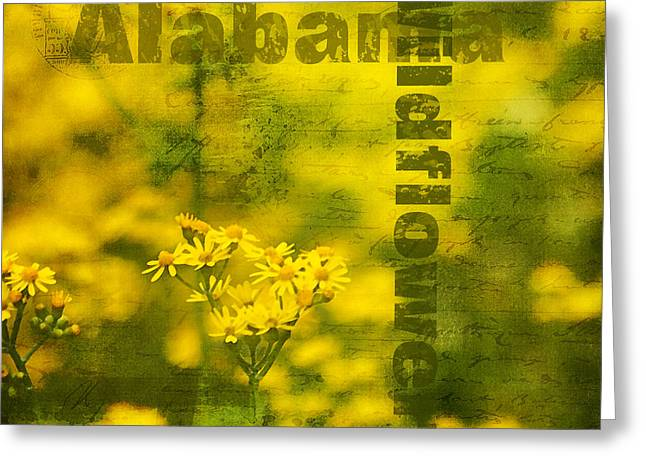 Alabama Wildflowers - Butterweed Greeting Card by Kathy Clark