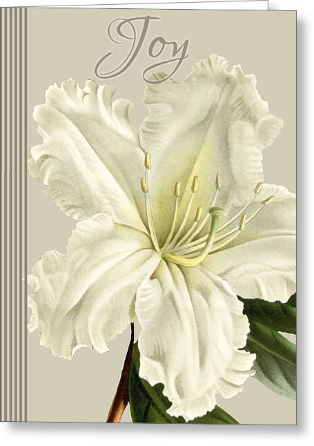 Alabaster Blossoms E Vertical 2 Greeting Card by Gail Fraser