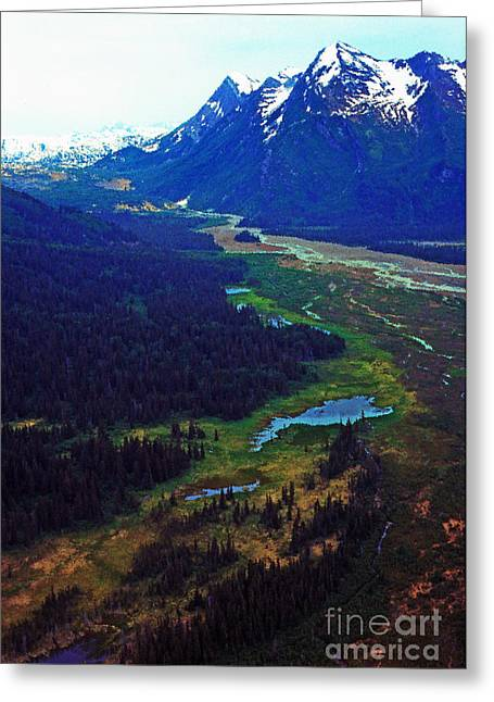 Alaska Aerial Greeting Card by Thomas R Fletcher