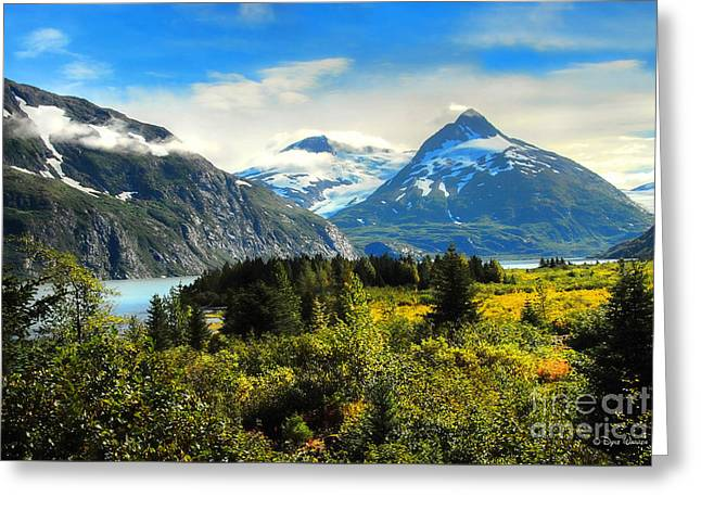 Greeting Card featuring the photograph Alaska In All Her Glory by Dyle   Warren