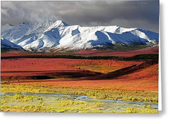 Alaska Range, Autumn, Taiga, Denali Greeting Card