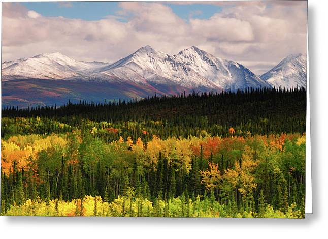 Alaska Range In Autumn, Taiga, Tundra Greeting Card