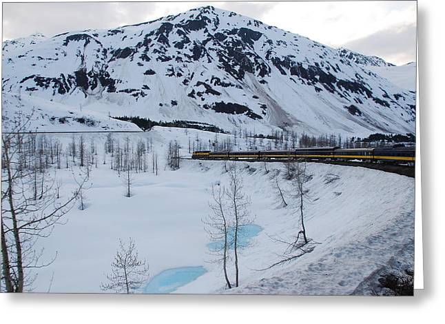 Alaska Train To Denali Greeting Card