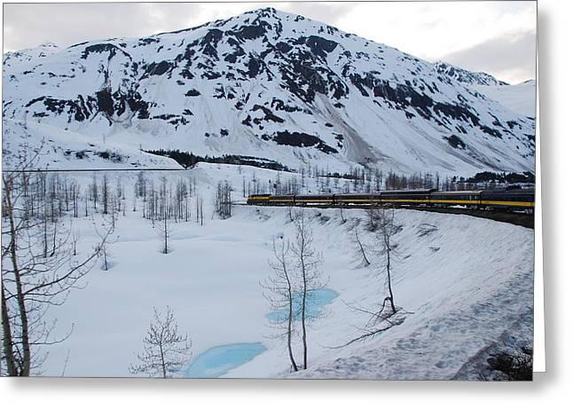 Alaska Train To Denali Greeting Card