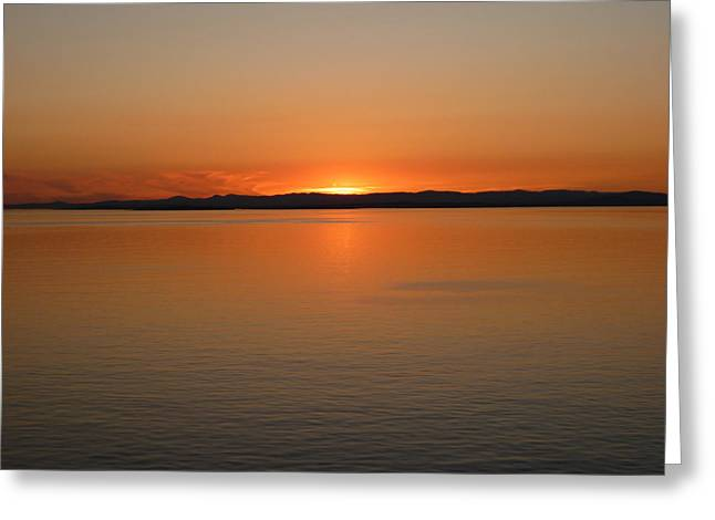Alaskan Dawn Greeting Card by David Nichols