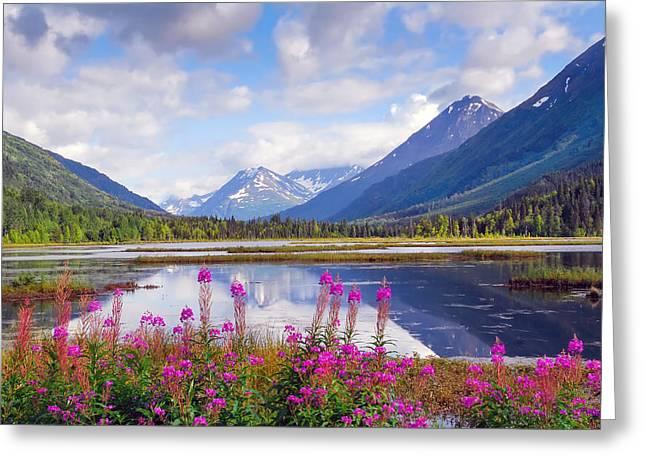 Alaskan Horizons Greeting Card
