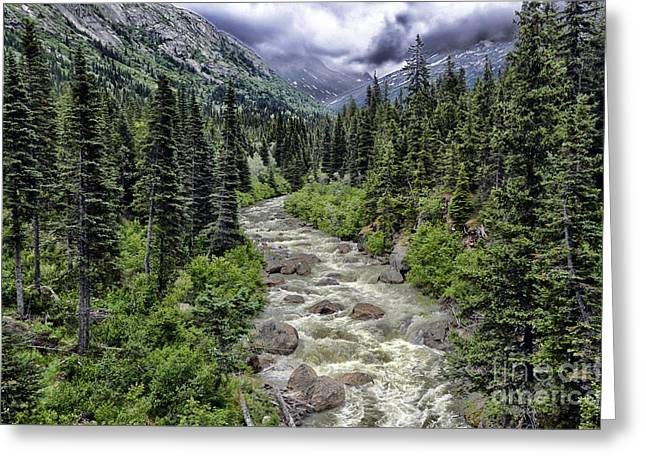 Greeting Card featuring the photograph Alaskan Wilderness by JRP Photography