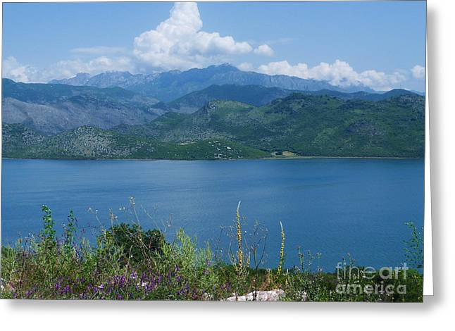 Albania From Lake Skadar Greeting Card