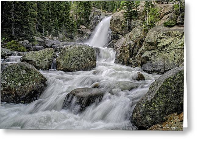 Alberta Falls Greeting Card by Tom Wilbert