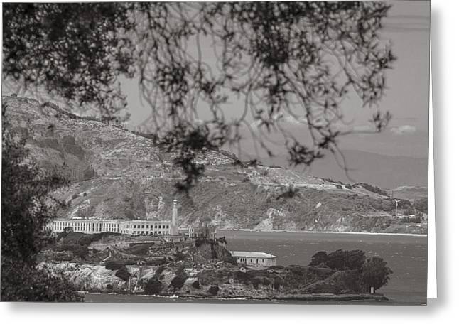 Alcatraz In San Fransico Greeting Card