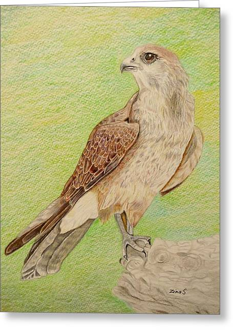 Alert For Prey Greeting Card by Zina Stromberg
