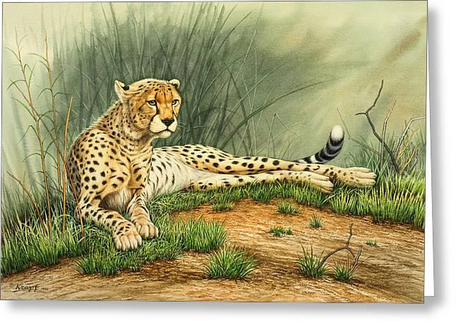 Alert Repose  - Cheetah Greeting Card by Paul Krapf