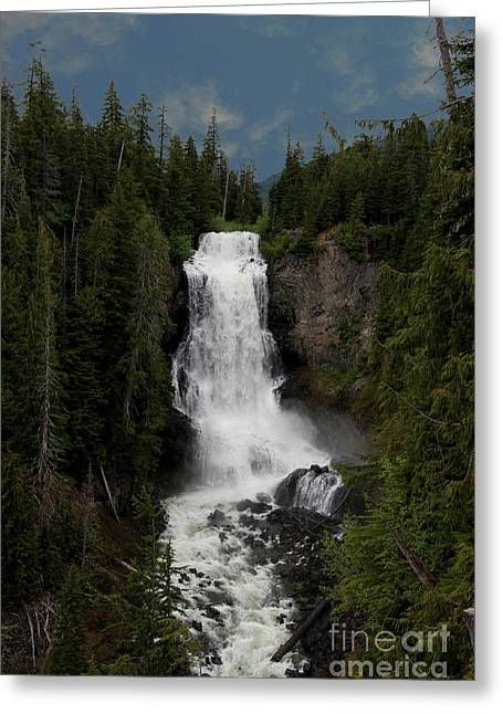 Greeting Card featuring the photograph Alexander Falls by Rod Wiens