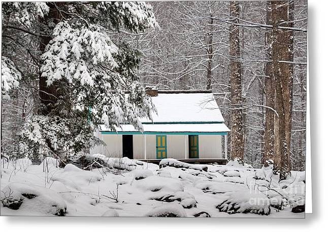 Greeting Card featuring the photograph Alfred Reagan's Home In Snow by Debbie Green