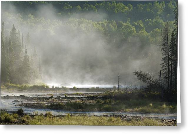 Algonquin Early Morning Greeting Card
