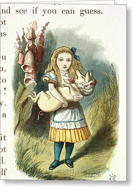 Alice And The Pig-baby Greeting Card by British Library