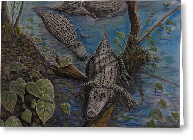 Aligators At Rest Greeting Card by Richard Goohs