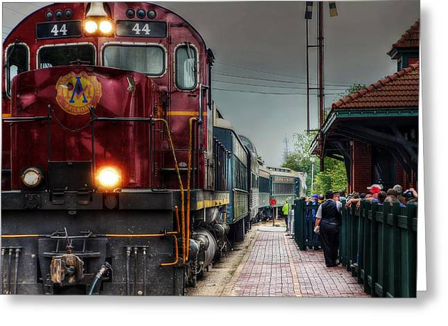 All Aboard Greeting Card by Tony  Colvin
