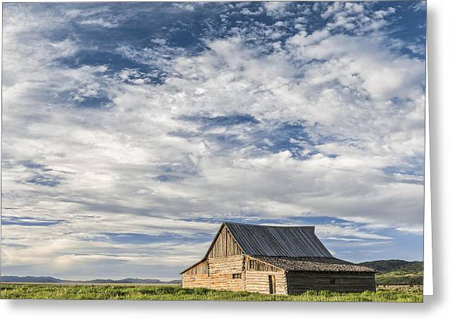 All Alone II Greeting Card by Jon Glaser