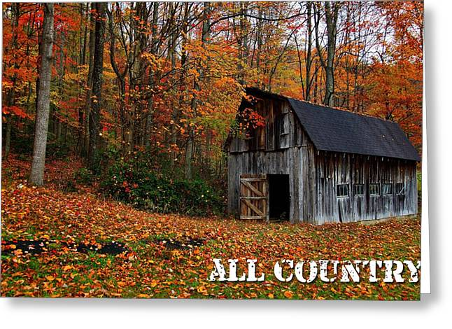 All Country Greeting Card by Marvin Blaine