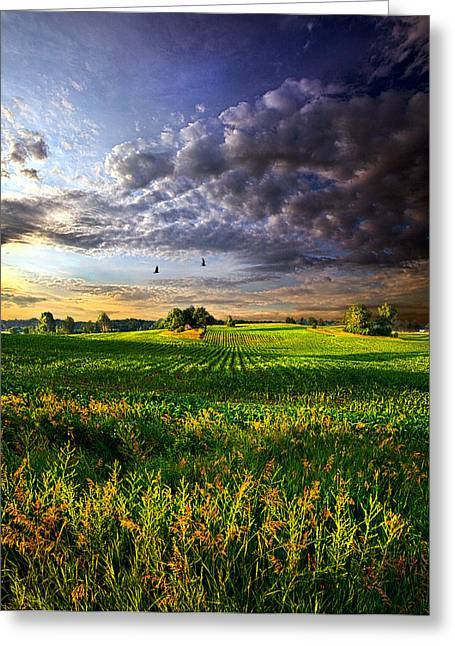 All I Need Greeting Card by Phil Koch